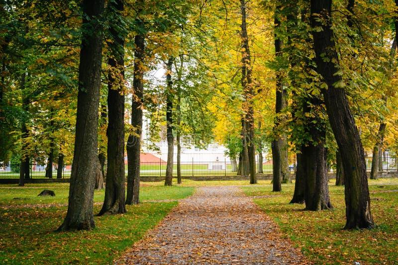 Colore iniziale di autunno visto al parco di Kadrioru, a Tallinn, l'Estonia fotografia stock libera da diritti
