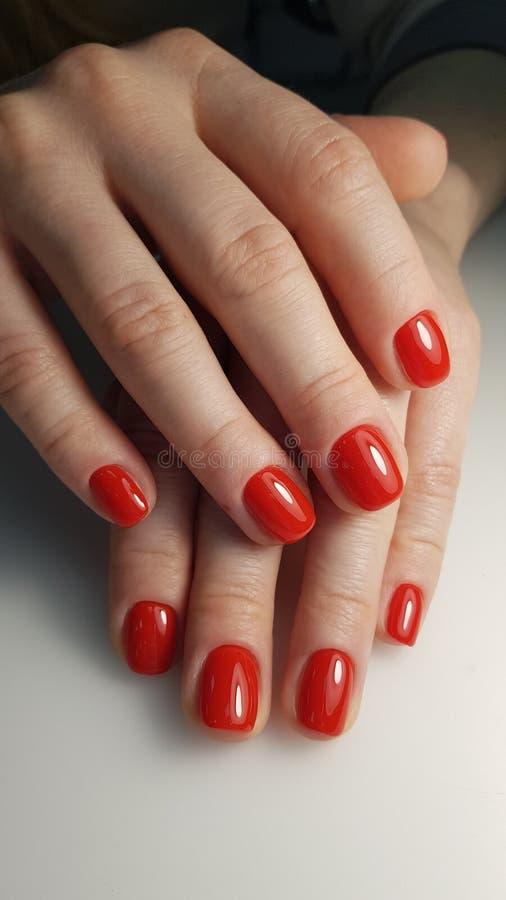 Colore rosso del manicure immagine stock libera da diritti