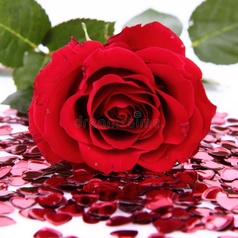 Colore rosso di rosa e coriandoli fotografia stock libera da diritti