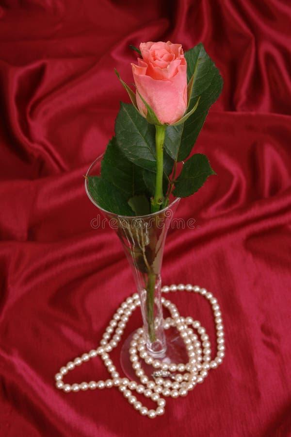 Colore rosso di rosa e perle immagine stock libera da diritti