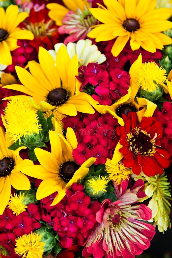 Colore rosso e colore giallo immagine stock libera da diritti