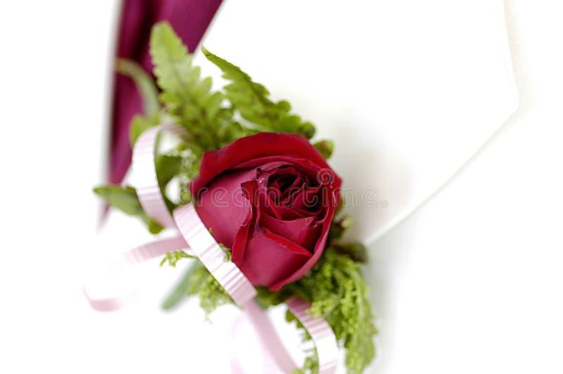 Colore rosso Rosa di Boutonniere fotografia stock libera da diritti