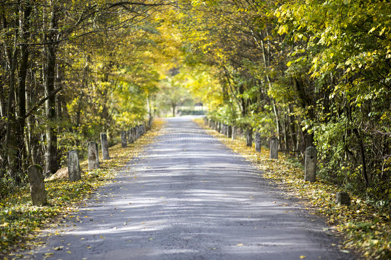 Colored autumn and an old road with milestones. An old road with milestones during colored autumn stock images