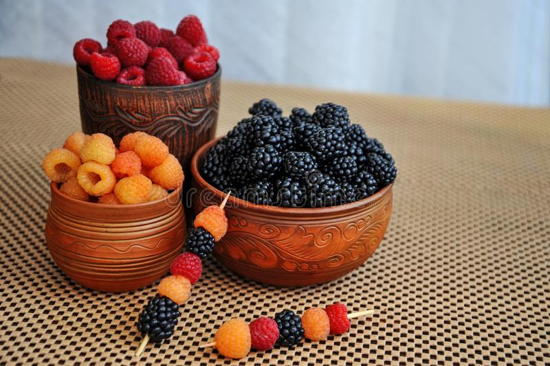 Colored berries of red, yellow and black raspberries or blackberries in earthenware royalty free stock photos