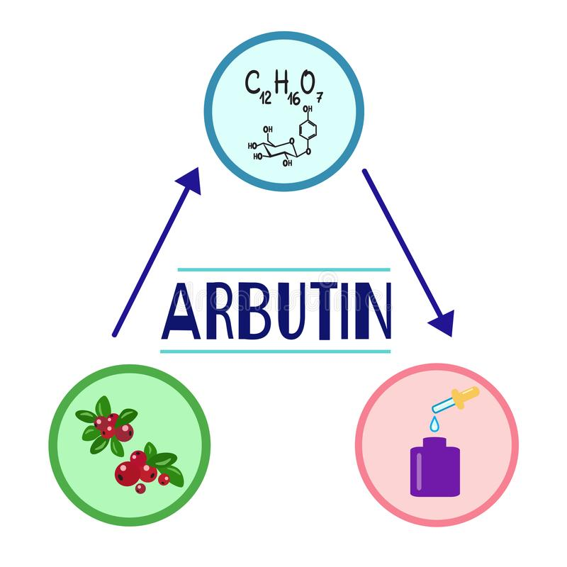 Free Colored Bottle Of Cream With The Arbutin. The Berries Of Bearberry And Cowberry. Stock Images - 112725384