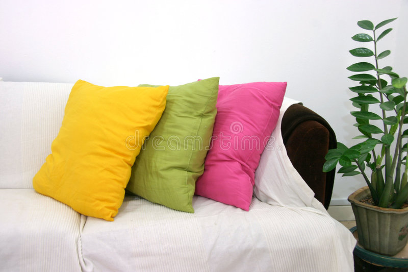 Colored cushions. Coloured cushions on a dark brown sofa with a white cover and potted plant stock photography