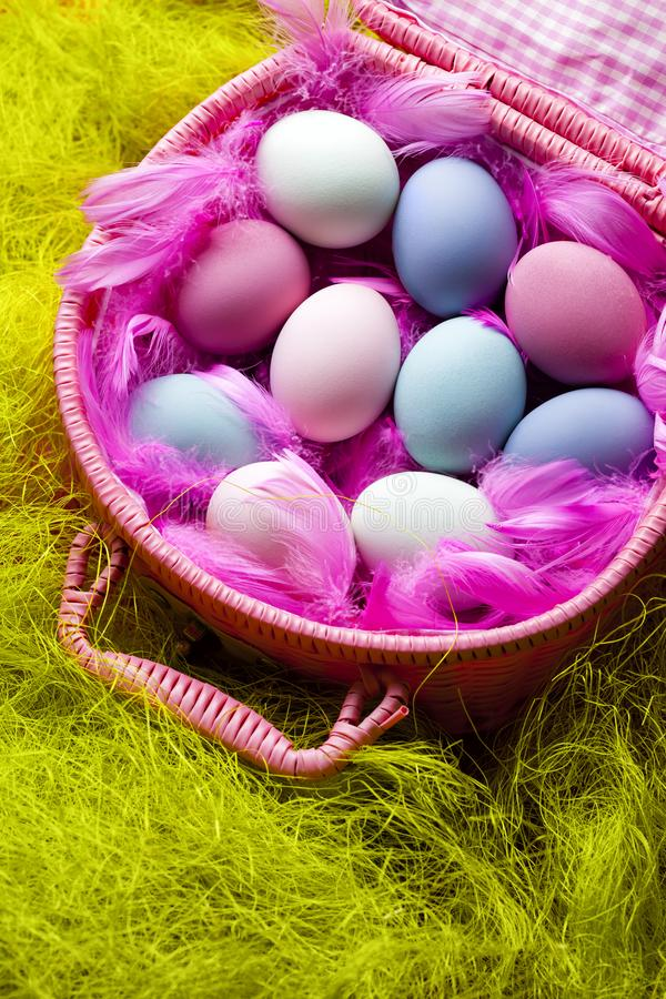 Colored Easter eggs and pink feathers in a basket on green background royalty free stock image