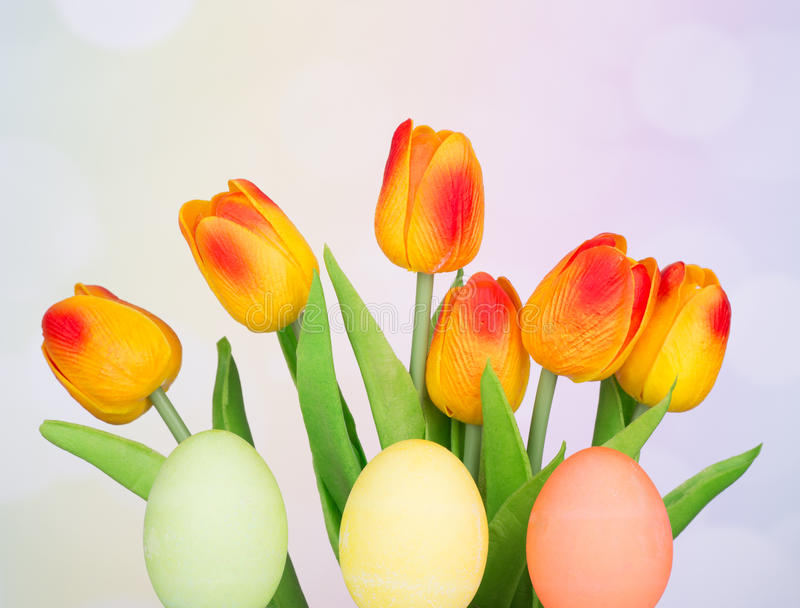 Colored Easter Eggs and Tulips. On a colorful background royalty free stock image