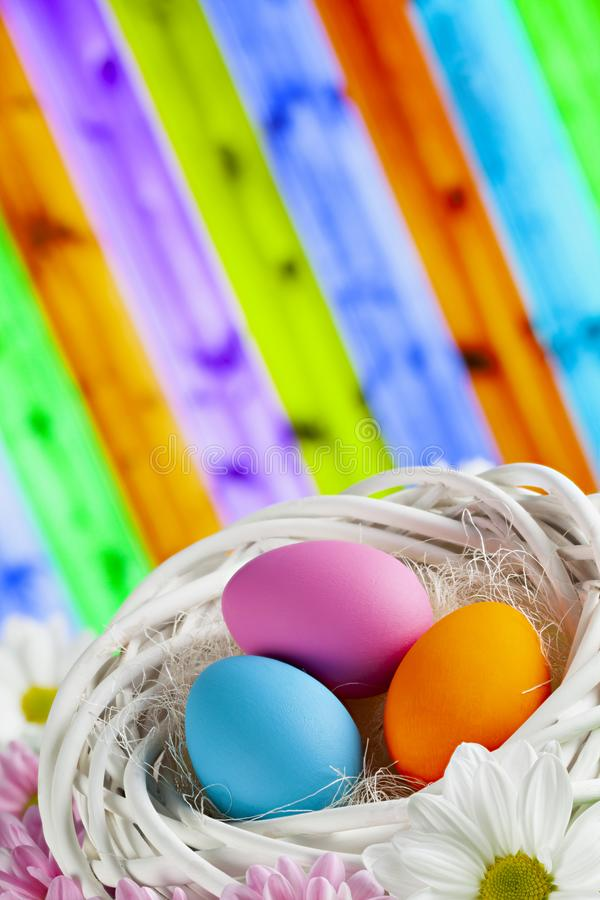 Colored Easter eggs in white nest on patterned colorful background stock photos