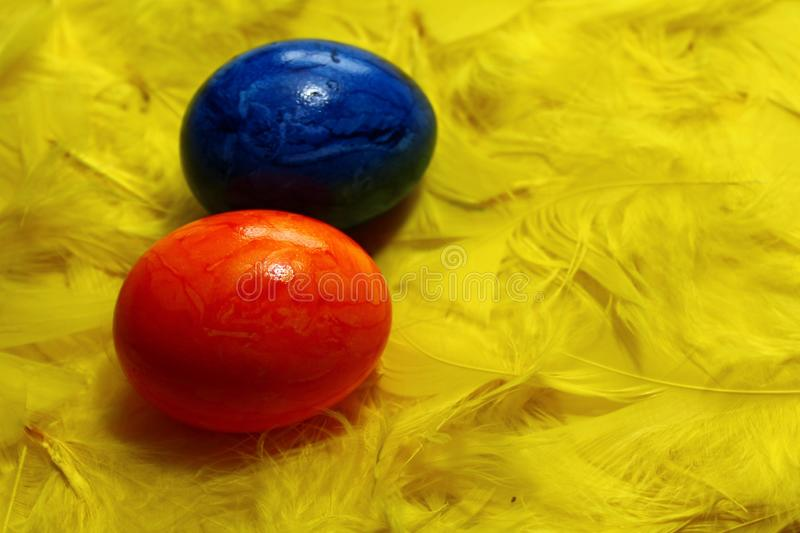 Colored eastereggs on yellow feathers. The picture shows colored eastereggs on yellow feathers stock photo