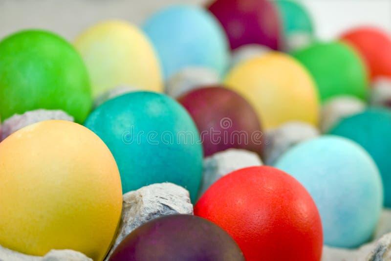 Colored Eggs in Carton