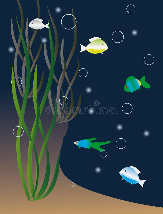 Download Colored Fish Among The Seaweed Stock Vector - Image: 12684943