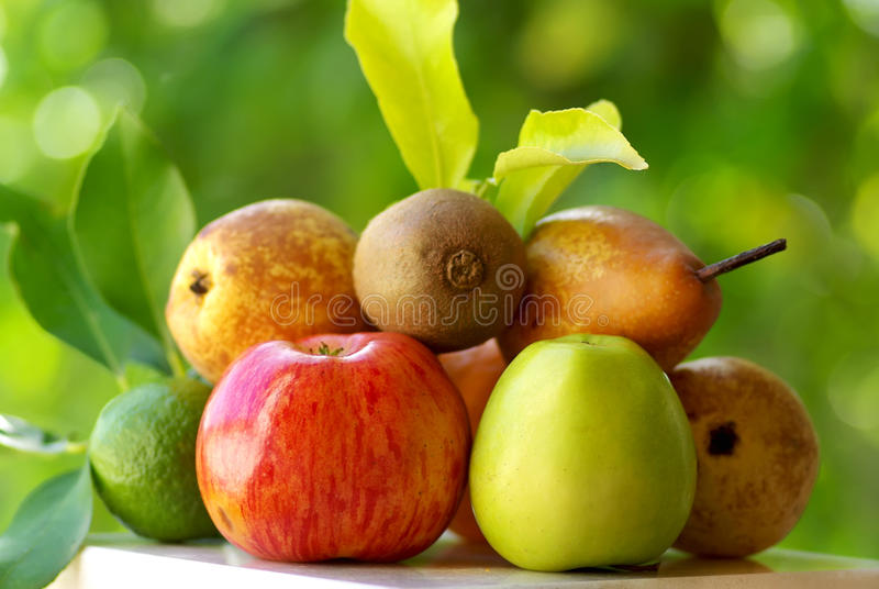 Download Colored fruits. stock photo. Image of health, diet, group - 14616454