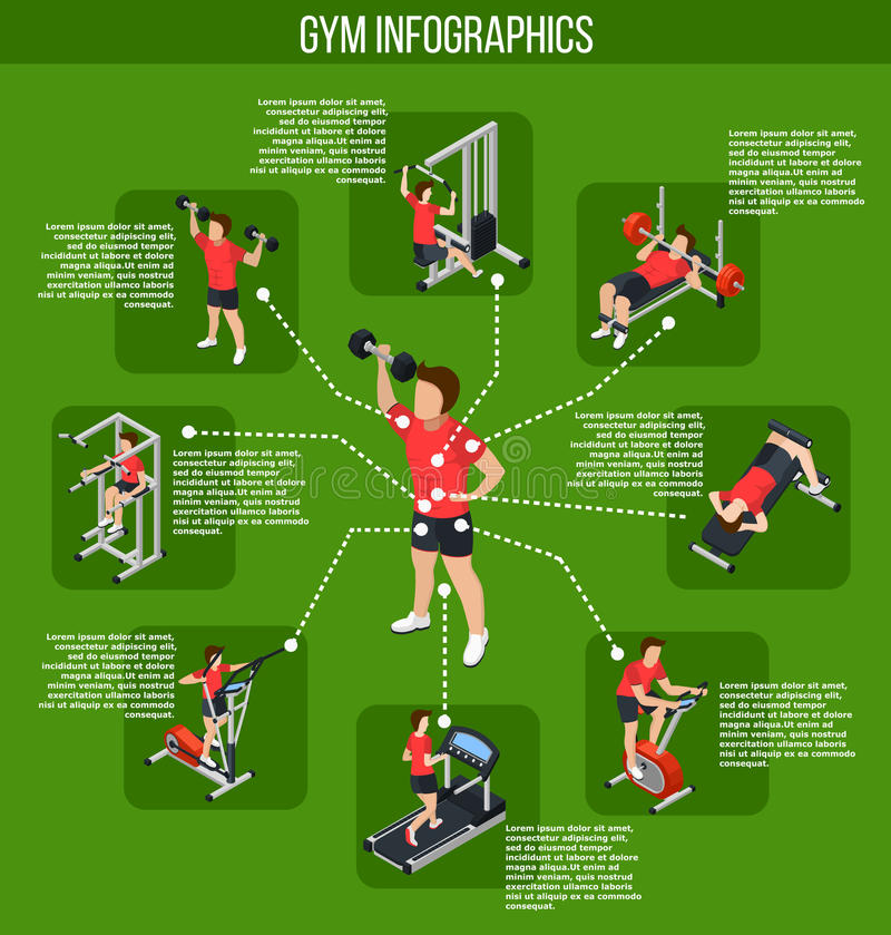 Colored Gym Infographics. And types of exercises with influence of different muscle groups vector illustration royalty free illustration