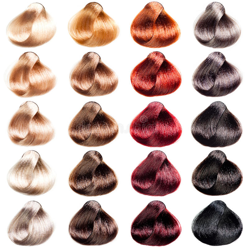 Colored hair samples stock photo. Image of haircare, brown - 53182974