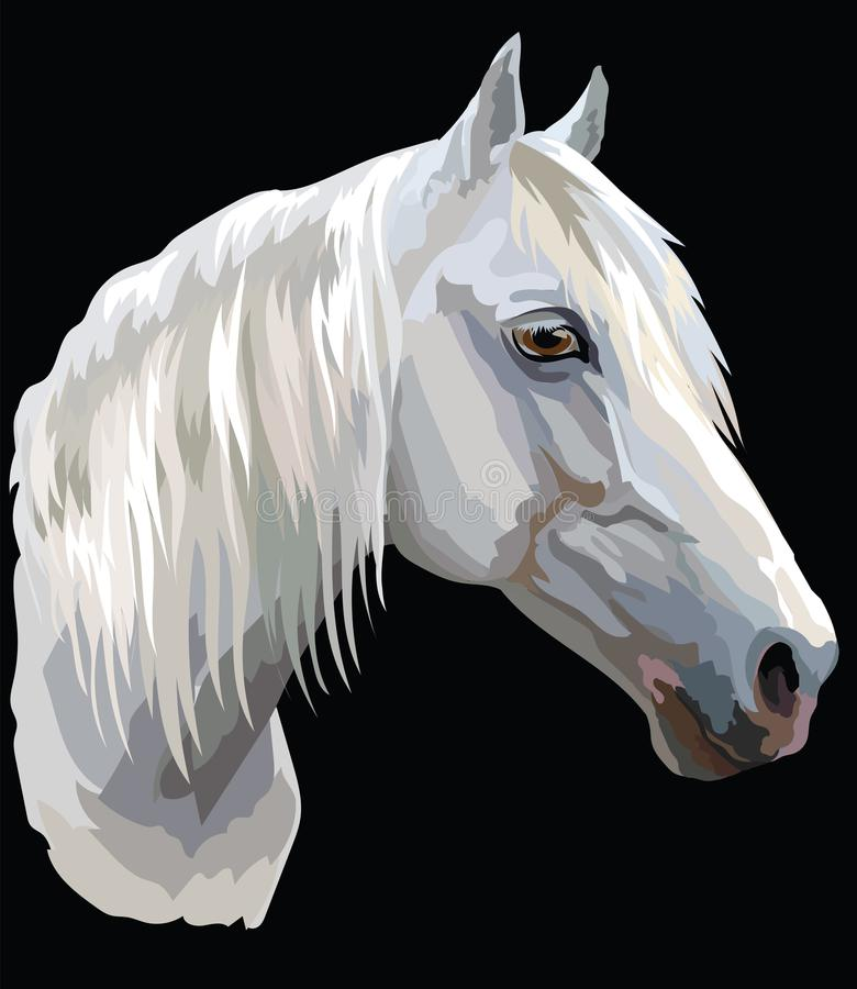 Colored Horse portrait-6 royalty free illustration