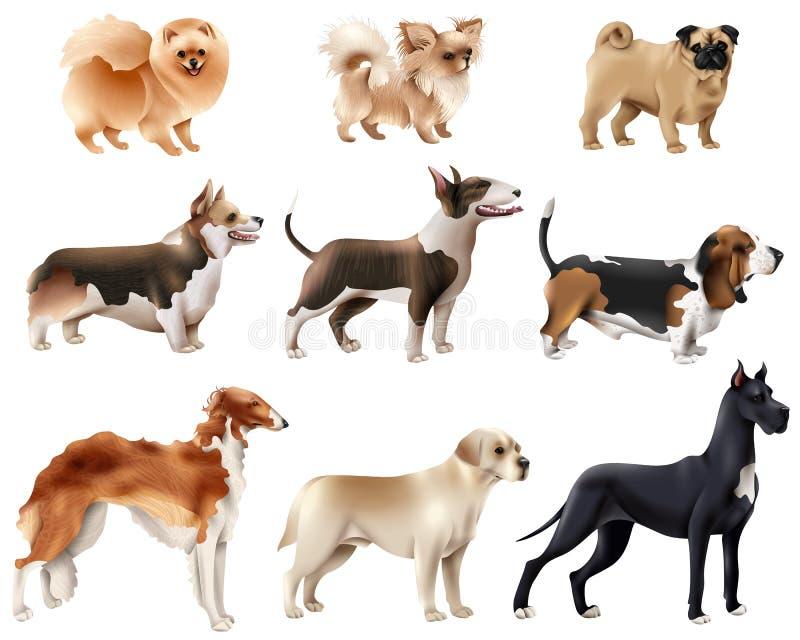 Dog Breeds Icon Set royalty free illustration