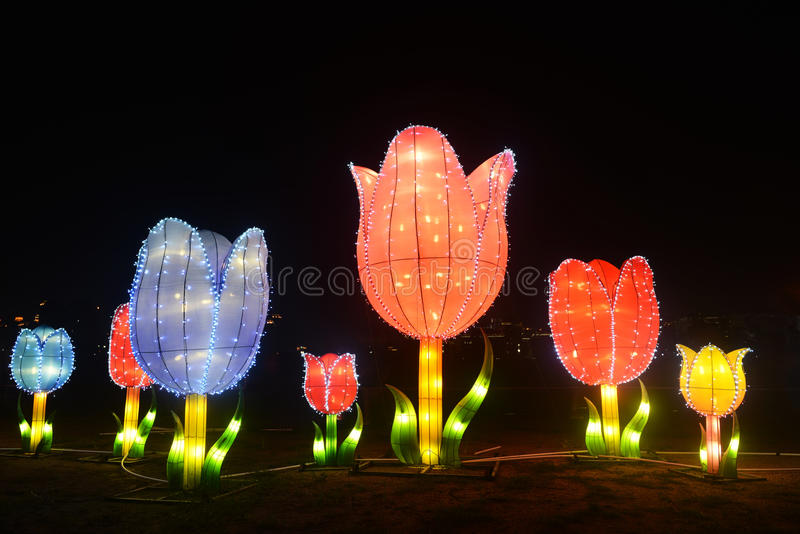 Colored LED light flower. In park at night in festival of lanterns China royalty free stock photo