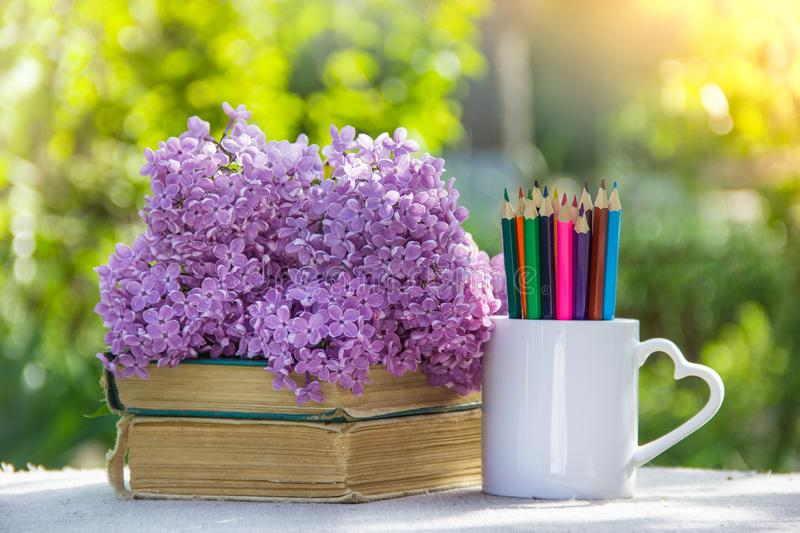 Colored pencils and stack of books. Back to school. Pencils, books and flowers stock photography