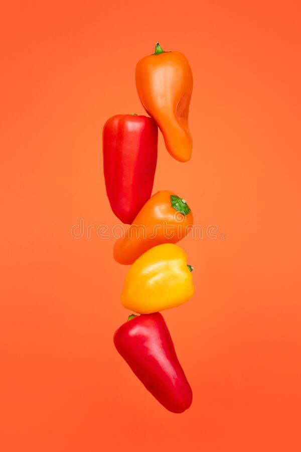 Colored peppers on a orange background. Cooking concept. Vegetables on color background royalty free stock images