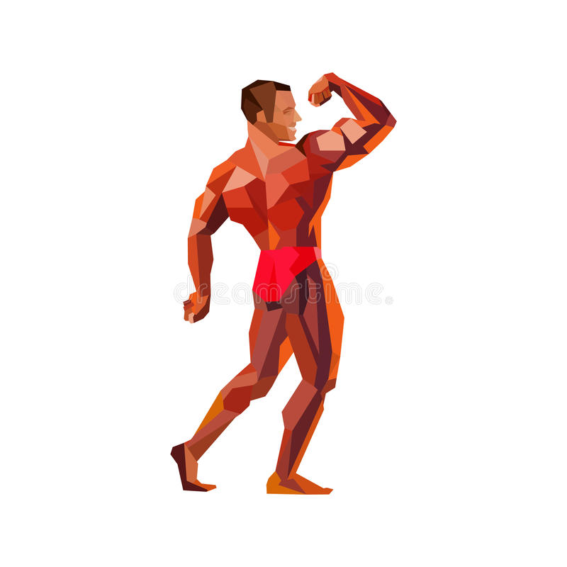 Colored posing bodybuilder, silhouette. Vector illustration. Colored bodybuilder, showing his muscles. Silhouette of athlete. Vector illustration of posing royalty free illustration