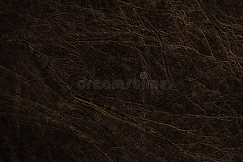 Colored skin texture, natural or faux dark brown leather background with gold veins, closeup. royalty free stock image