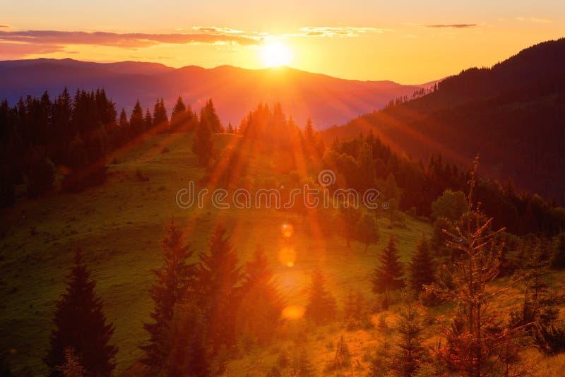 Colores asombrosos de la puesta del sol en las montañas, paisaje del verano de la naturaleza fotos de archivo libres de regalías