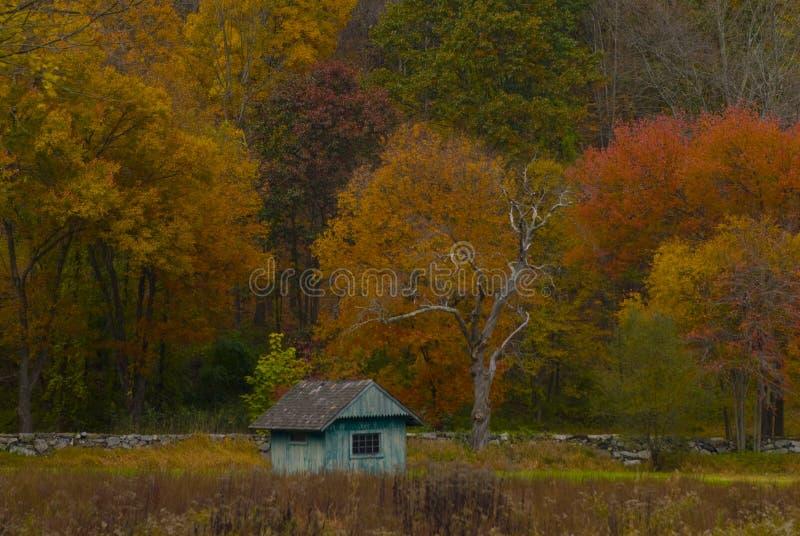 Colores azules de la caída de la cabaña imágenes de archivo libres de regalías