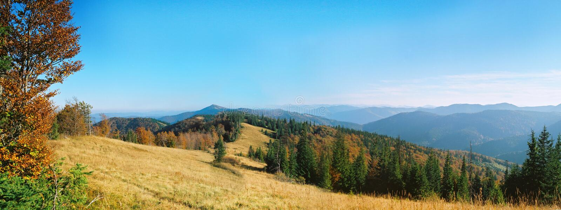 Colores calientes del bosque en las montañas fotografía de archivo libre de regalías