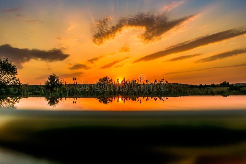 Colores calientes y calientes y sombras de paisajes hermosos de Rusia en la región de Rostov Campos locales de girasoles amarillo foto de archivo libre de regalías