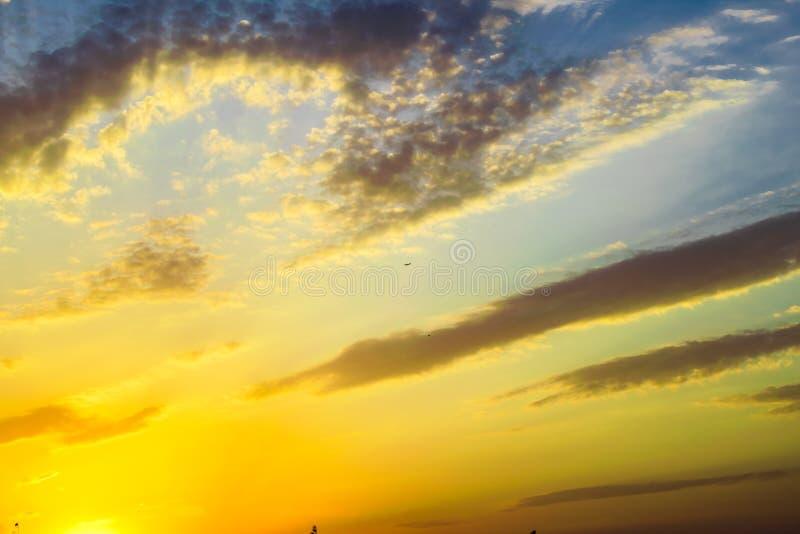 Colores calientes y calientes y sombras de paisajes hermosos de Rusia en la región de Rostov Campos locales de girasoles amarillo imagenes de archivo