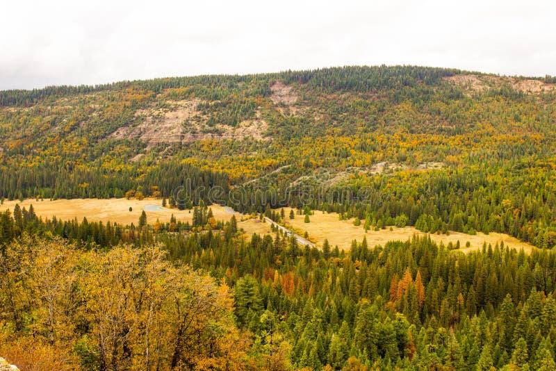 Colores cambiantes en caída en Sierra Nevada Valley fotos de archivo libres de regalías