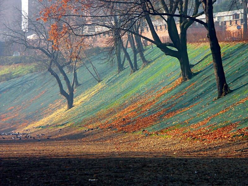 Colores de la caída imagen de archivo