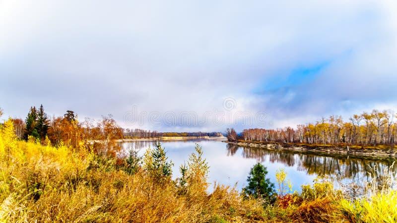 Colores de la caída alrededor de Thompson River del norte entre Barriere y Clearwater, A.C. fotos de archivo