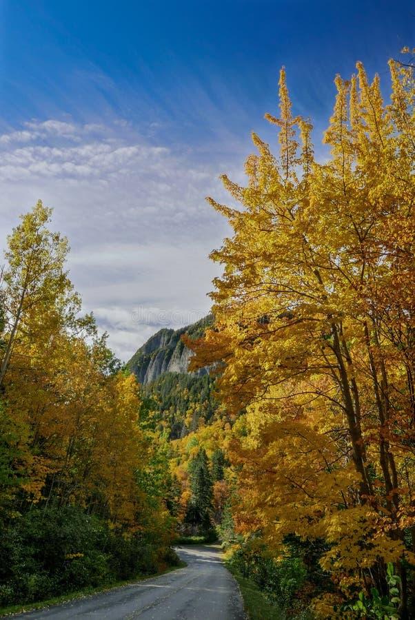Colores de la caída en el área del norte del parque nacional de Forillon imagen de archivo