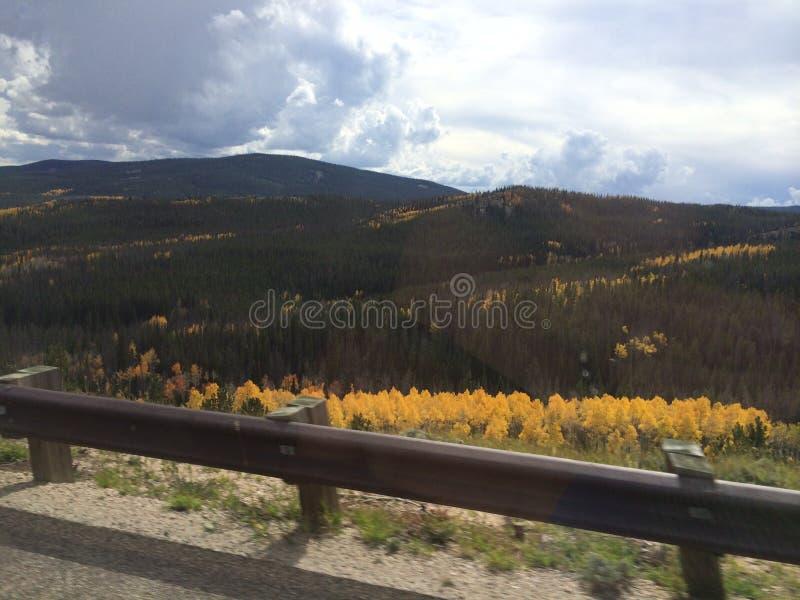 Colores de la caída en Wyoming fotos de archivo