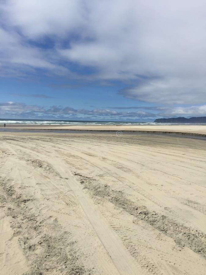 Colores de la costa de Oregon fotos de archivo