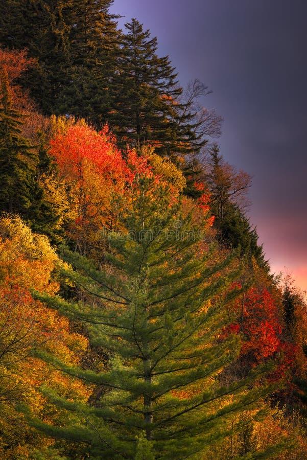 Colores de la mañana de la montaña fotos de archivo