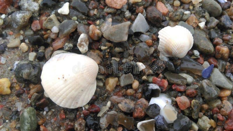 Colores de la playa báltica fotos de archivo