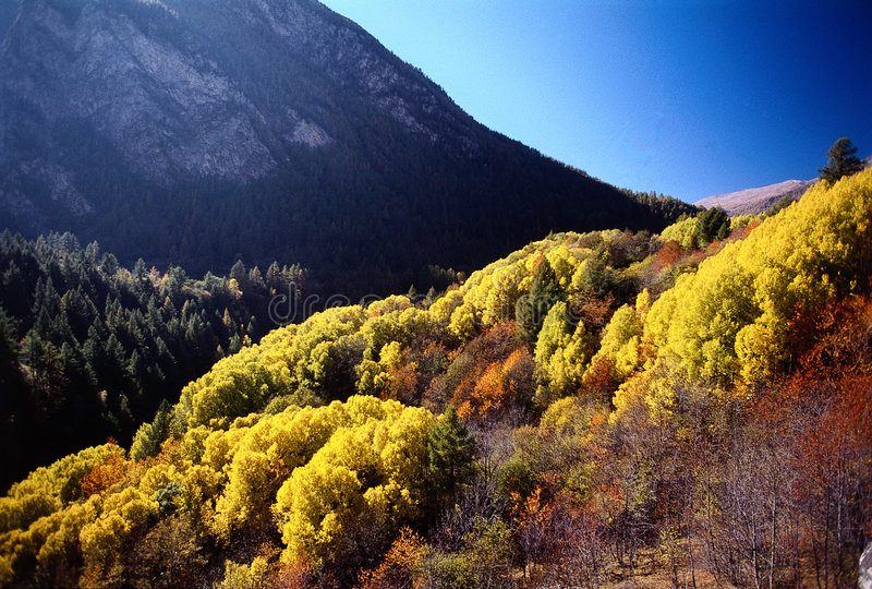 Colores de las montañas del otoño imágenes de archivo libres de regalías
