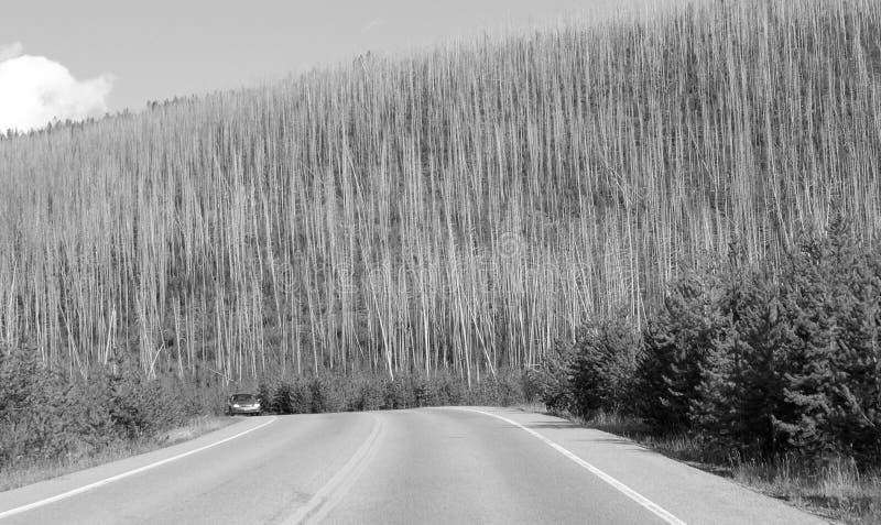 Colores de Yellowstone imagenes de archivo