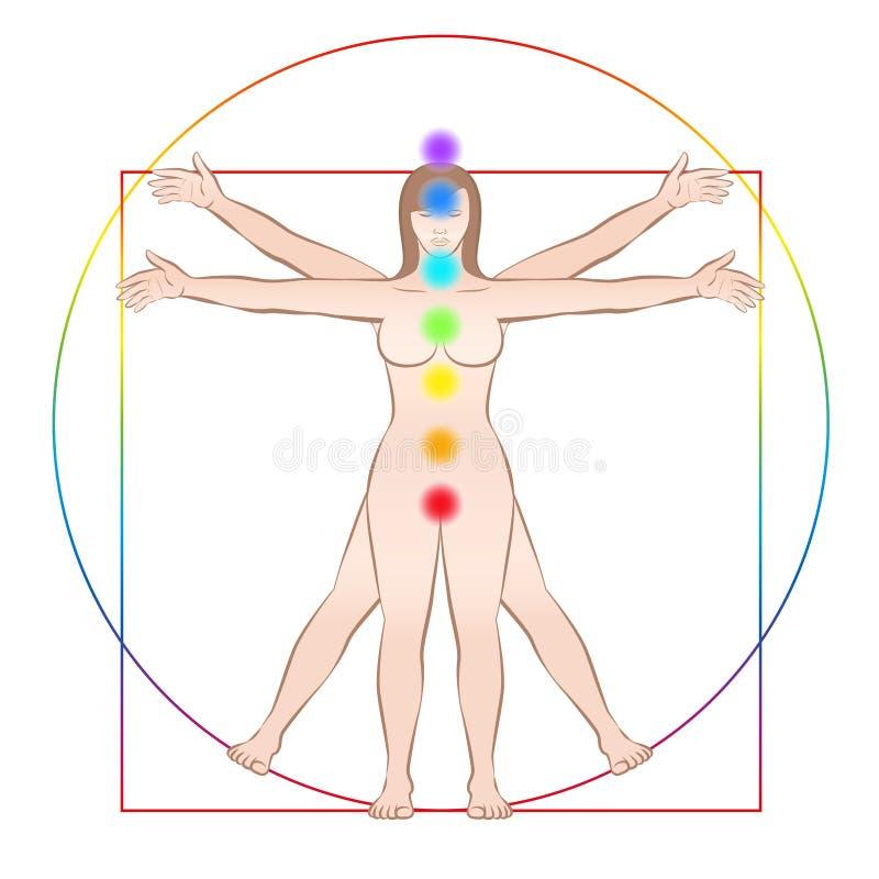 Colores del arco iris de Chakras del cuerpo femenino siete de la mujer de Vitruvian stock de ilustración