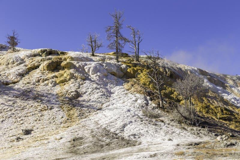 Colores del géiser de Yellowstone fotos de archivo