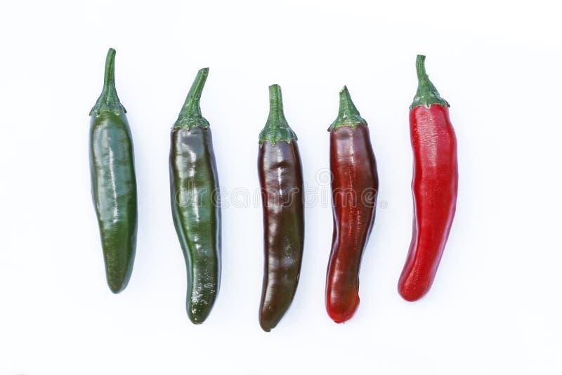 Colores del Jalapeno foto de archivo
