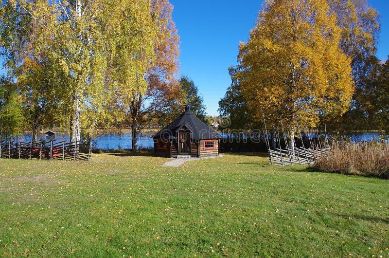 Colores del otoño cerca de un río imagen de archivo libre de regalías