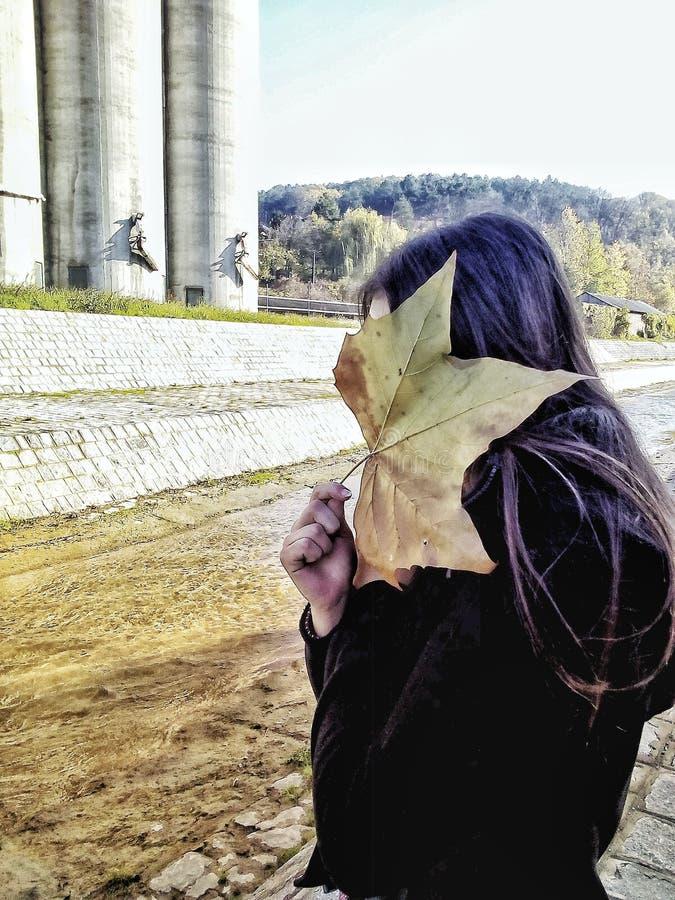 Colores del otoño de la muchacha imagen de archivo