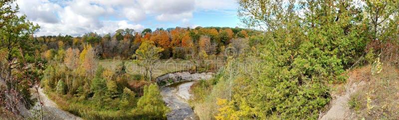 Colores del otoño en parque urbano nacional del colorete imágenes de archivo libres de regalías
