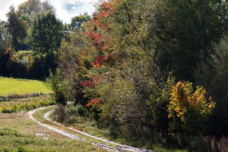 Colores del otoño en pequeño pueblo fotos de archivo