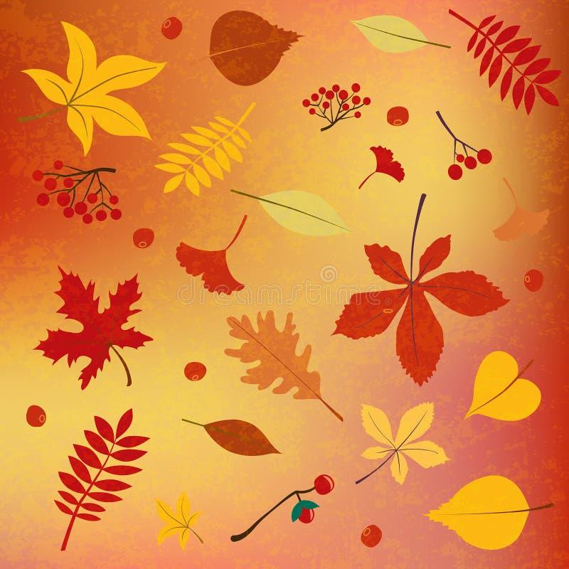 Colores del otoño, hojas, fondo estacional de las bayas stock de ilustración