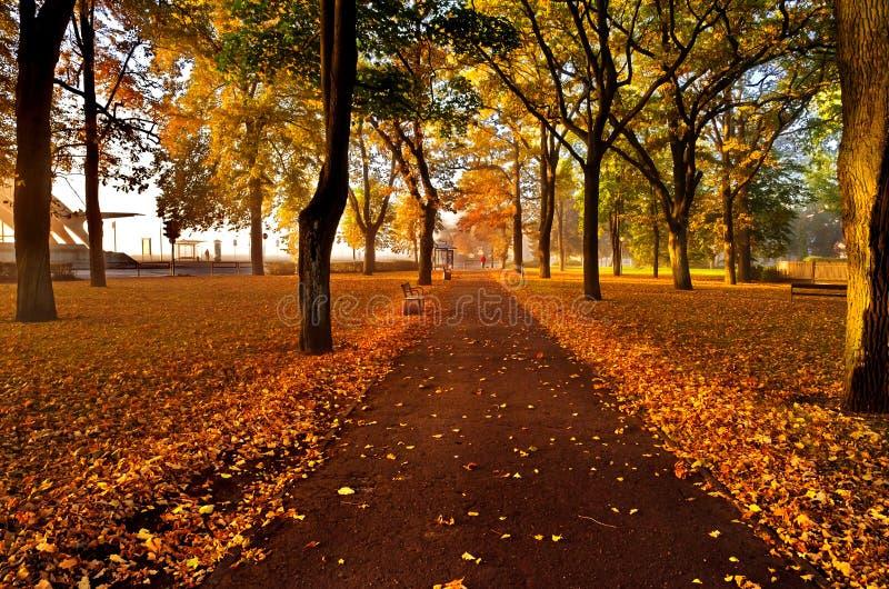 Colores del otoño, Jurmala, Latvia foto de archivo